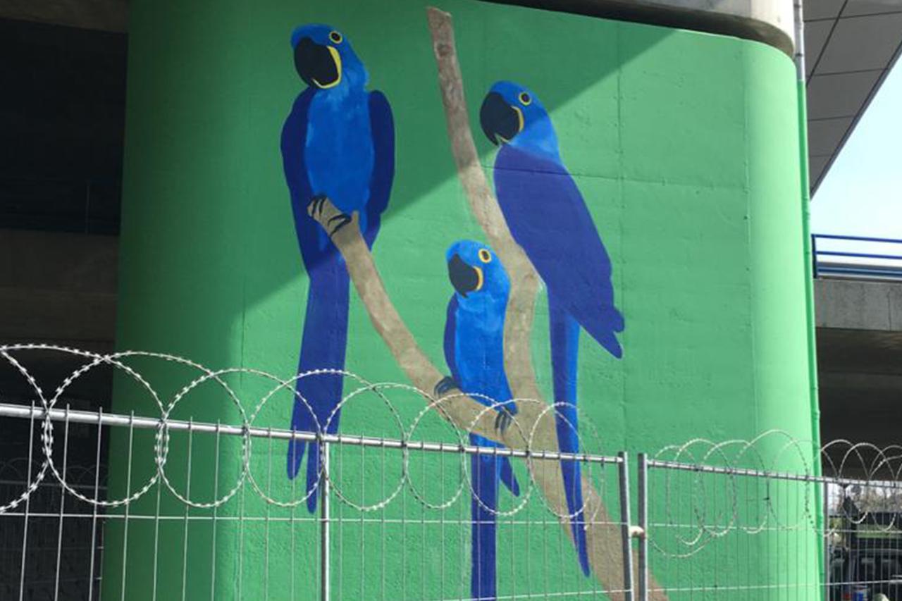Muurschildering anti-klad coating